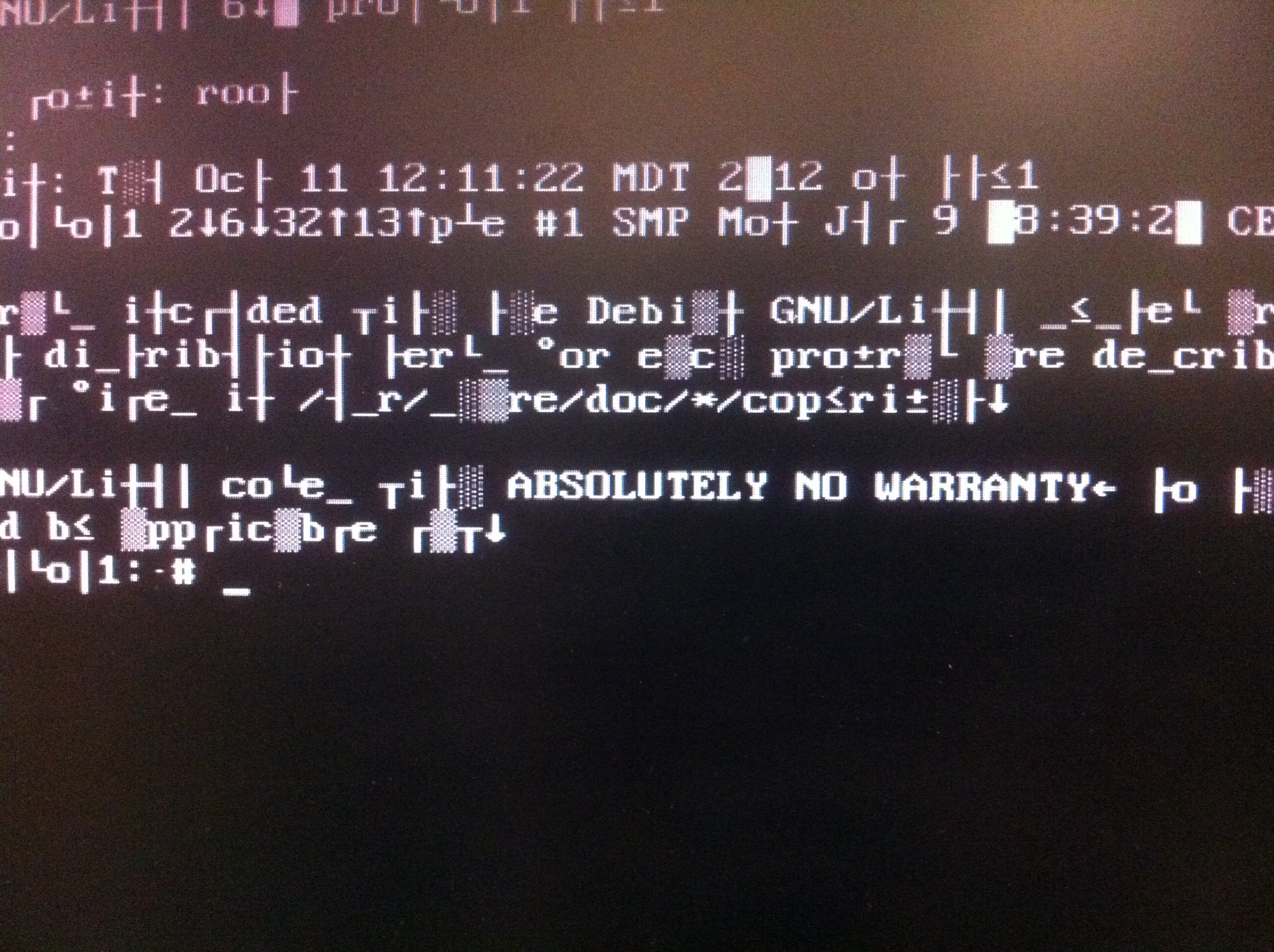 "screen with garbled text and ""ABSOLUTELY NO WARRANTY"" legible"